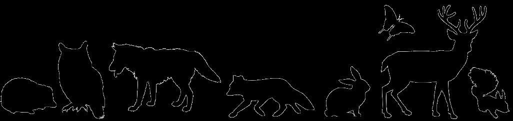animal-1297864_1280-removebg-preview